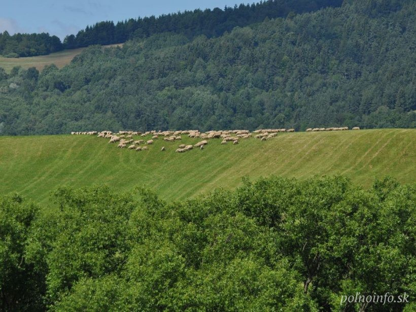 Agrorezort má k vyhláške MŽP o ochrane prírody 55 zásadných pripomienok