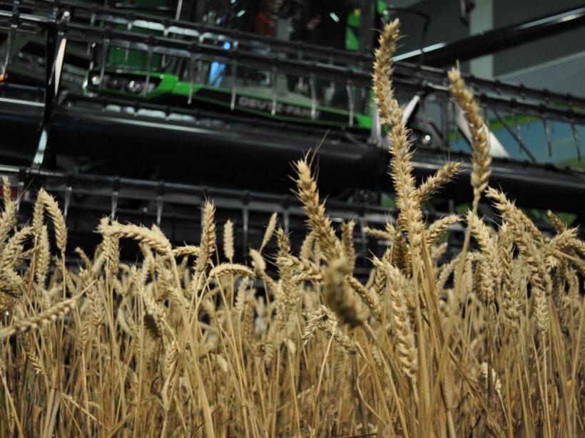 SPPK: Pasívne saldo agroobchodu SR v roku 2020 medziročne kleslo o 5,1 %