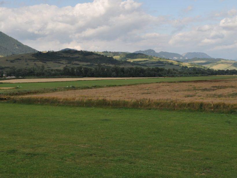 Prezidentka: Ak má byť zákon o pozemkových úpravách prijatý, tak v novom znení