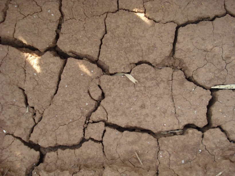 Sucho je podľa Zemana zásadnejším problémom než koronavírus