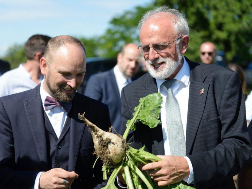 Zelenšia výroba cukru v Seredi