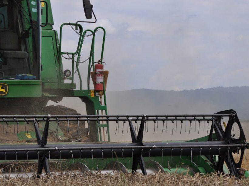 Júnové dažde pokropili naše polia živou vodou. Pšenica milo prekvapila