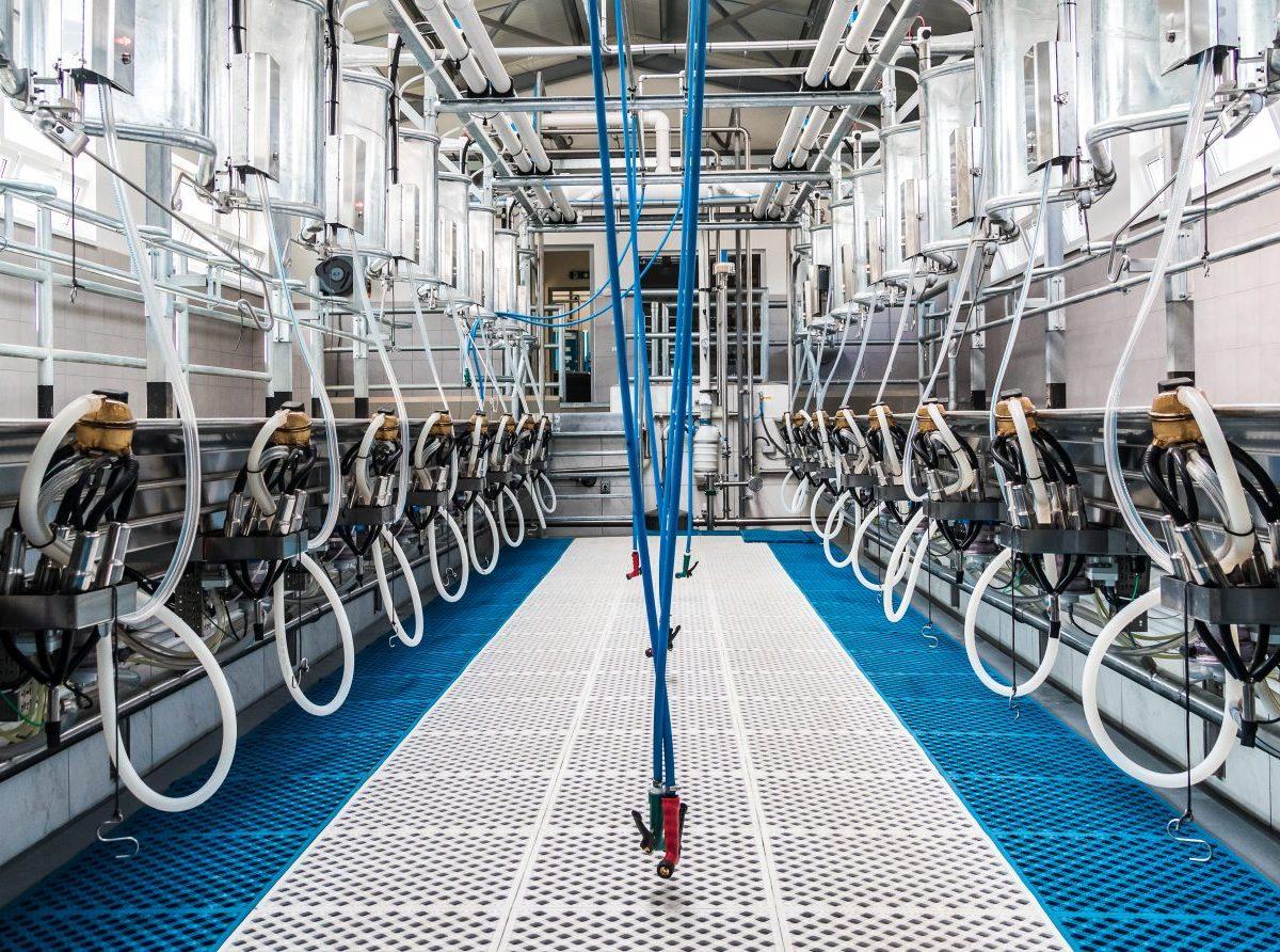SZPM: Deliť producentov mlieka na malých a veľkých neprinesie nič dobré