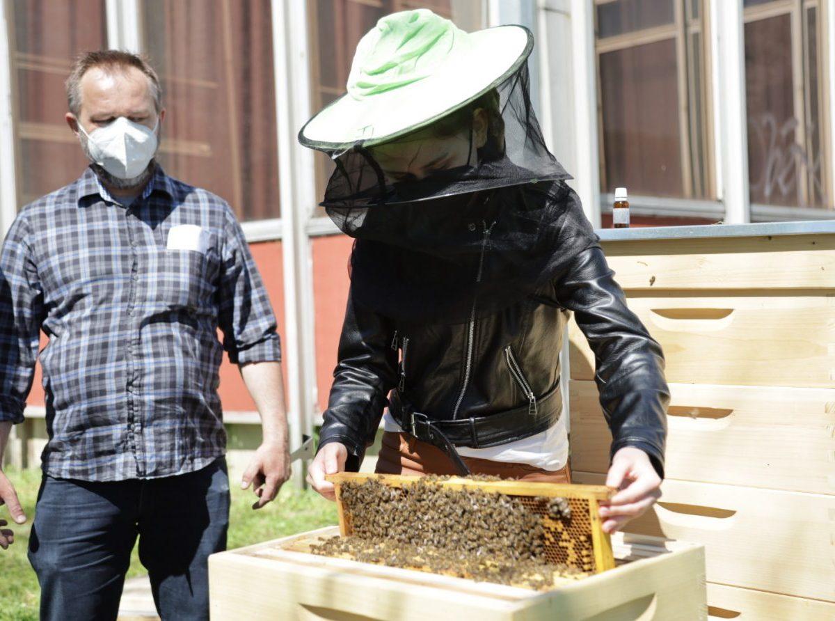 Včelárstvo na východnom Slovensku získalo dôležitého spojenca