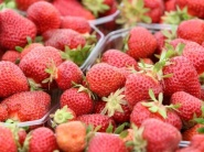 Starosta chce založiť obecný podnik na spracovanie ovocia