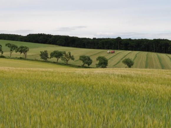 Poľnohospodári oceňujú možnosti poistenia