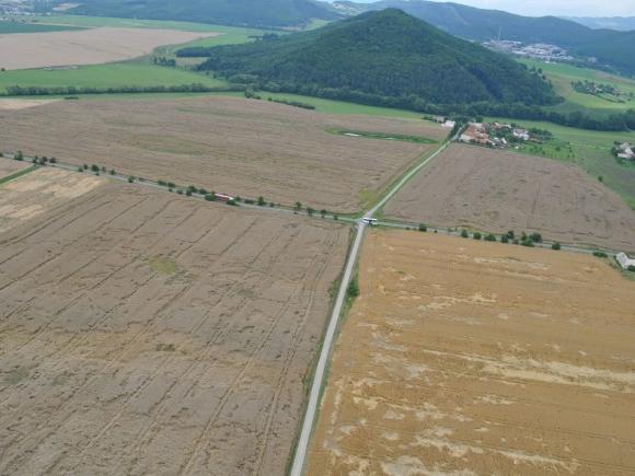 Ceny pšenice: Získajú pestovatelia, stratia chovatelia